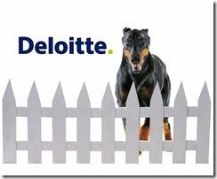 Deloitte_rs_2009_tmt_global_security_survey