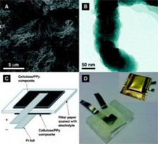 algae-battery-science