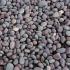 Kalkulatori i kamenje