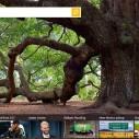 I Bing poziva na pomoć ugroženima