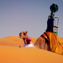 Google zapošljava kamile