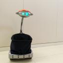 Kupovina i robotska posla