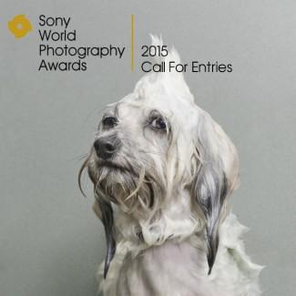 Sony World Photography nagrada 2015_fotografija br. 3