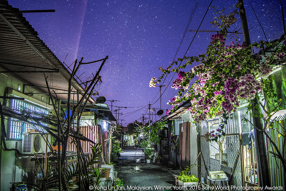 This is the back alley of my grandmother's house in Alor Setar, Kedah. The flower and tree is there for almost a decade, growing and flourishing with limited resources. I shot this during Chinese New Year when the sky is the clearest and the amount of light pollution is the lowest around the area here.