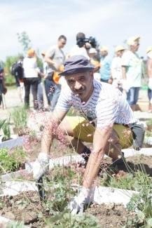 Ivan Jevtovic na sadnji cveca