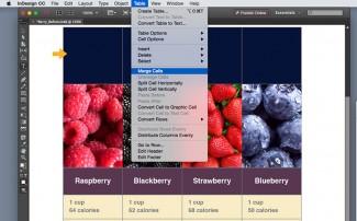 U ćelije tabele u InDesign‑u mogu se ubacivati slike, tako da sama ćelija predstavlja okvir za sliku