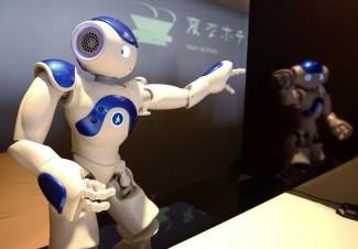 U ovom trenutku nabavka robotske posluge je vrlo skupa. S druge strane, ne treba zaboraviti da kiborg posluga može da funkcioniše neprekidno 24 časa, a da se pritom nimalo ne umori