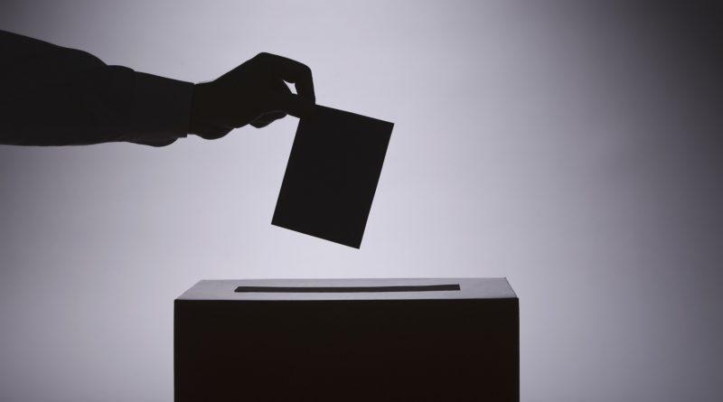 Izborna groznica